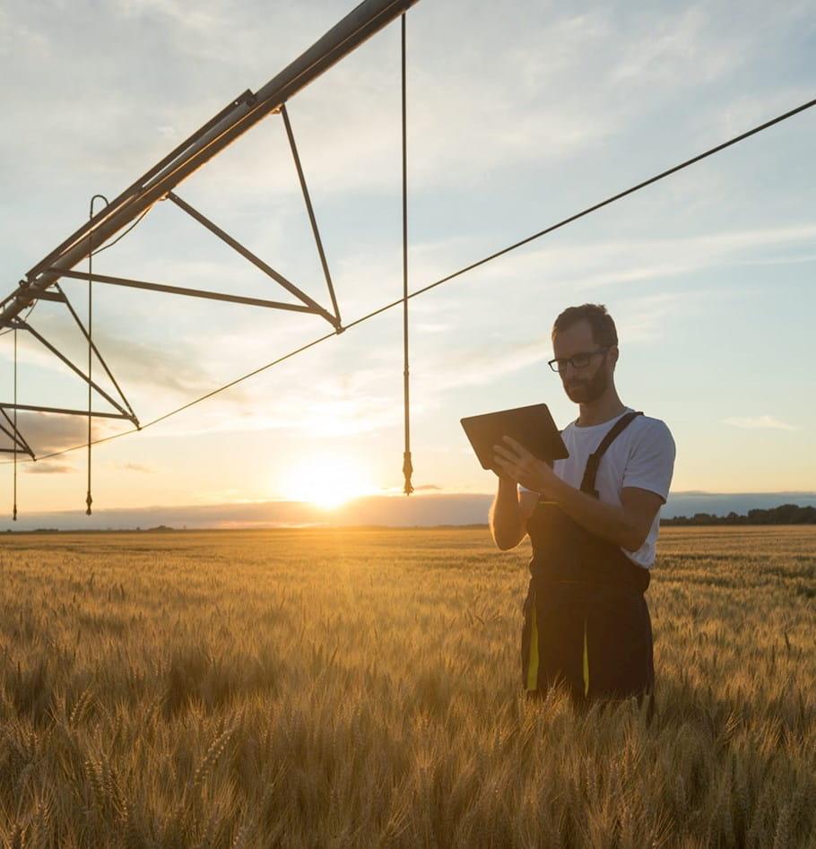 Cultivating a new season for digital transformation in Farm Credit